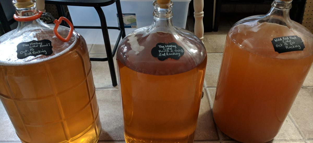 Homemade Hard Cider Making: Part 2