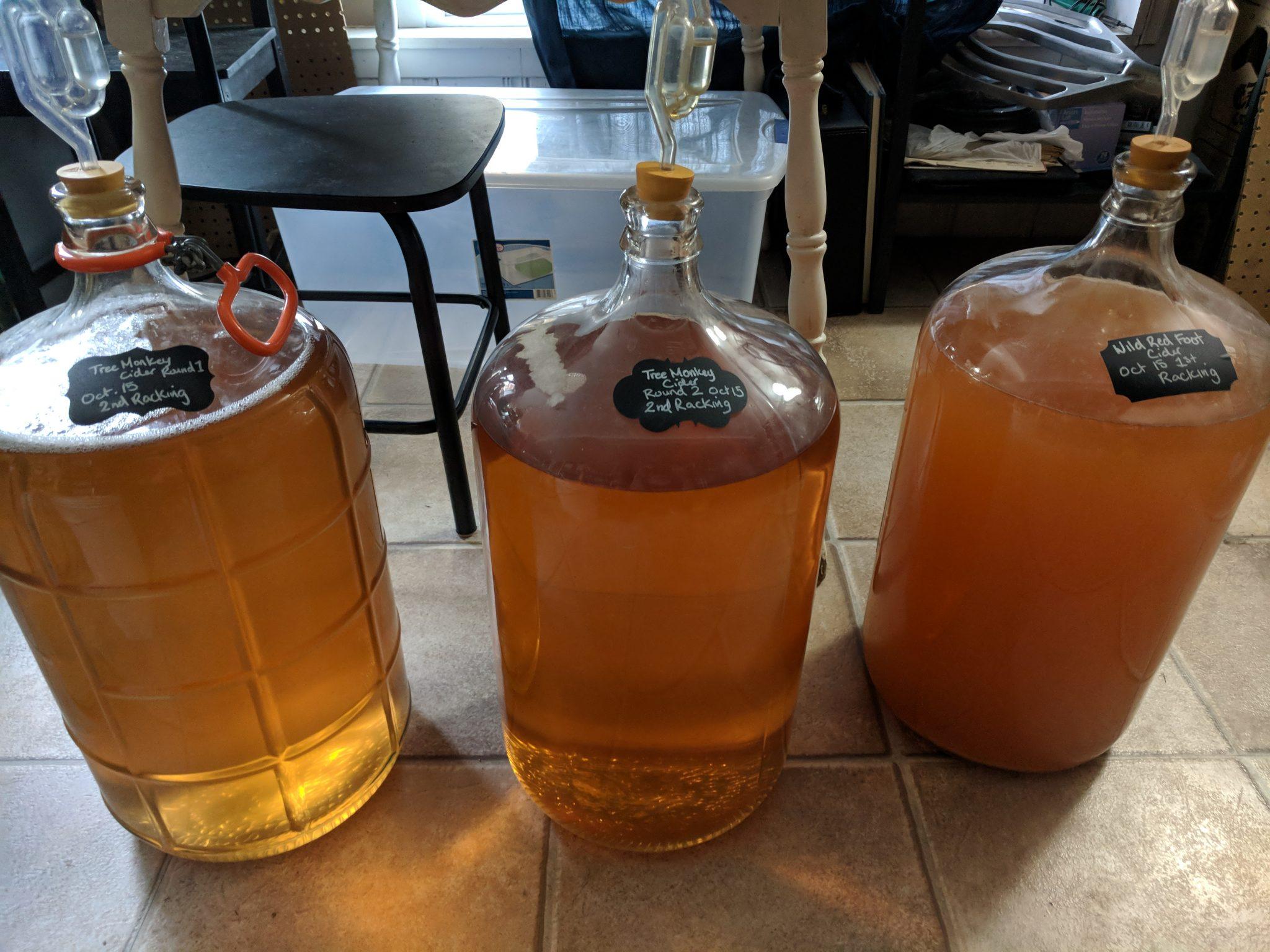 Homemade Hard Cider Making: Part 2