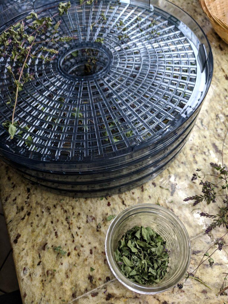 dehydrator and herbs