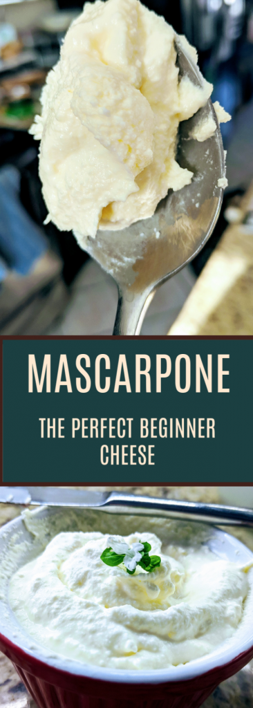 Mascarpone is a wonderfully simple cheese to make, and can be eaten on its own or added to recipes. Definitely a good starting point for new cheese makers!