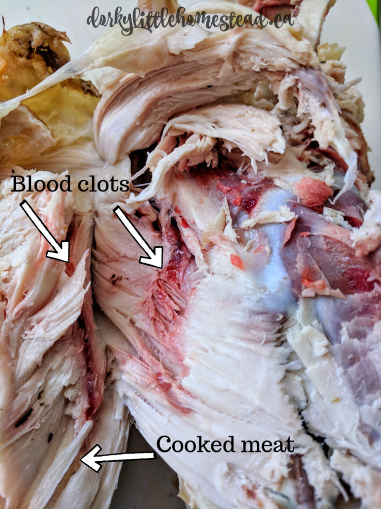 example of blood clot in fully cooked chicken