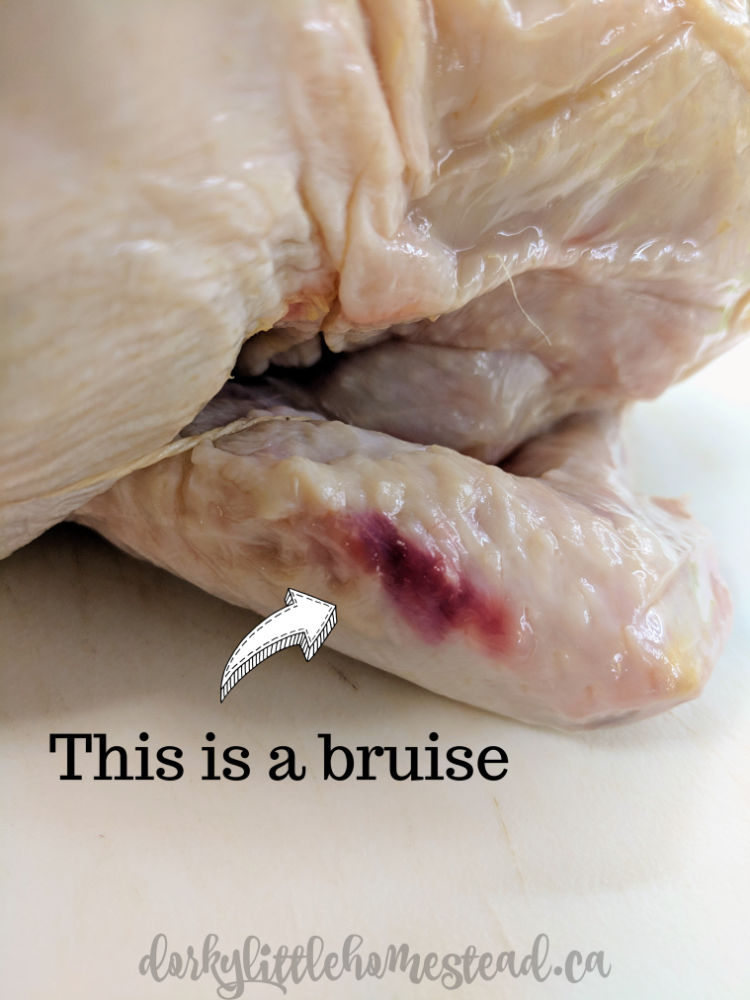 Bruised chicken wing.