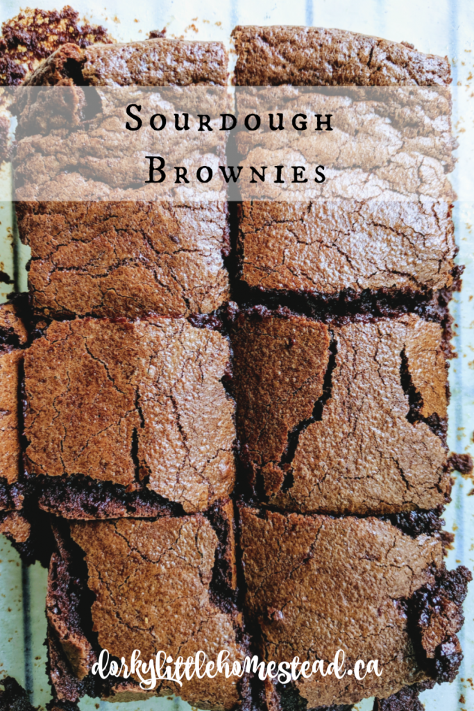 These brownies are a delicious way to use some of your discarded sourdough mother. They're dense and rich with a touch of tanginess from the sourdough. Superb with a latte