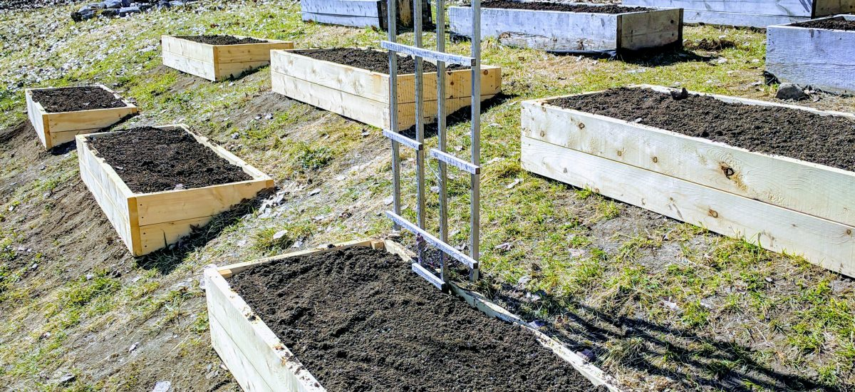 Garden Construction: Part 2