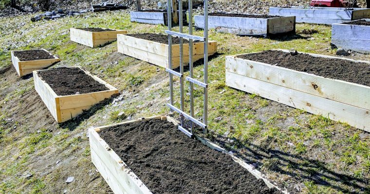 Garden Construction: Part 2
