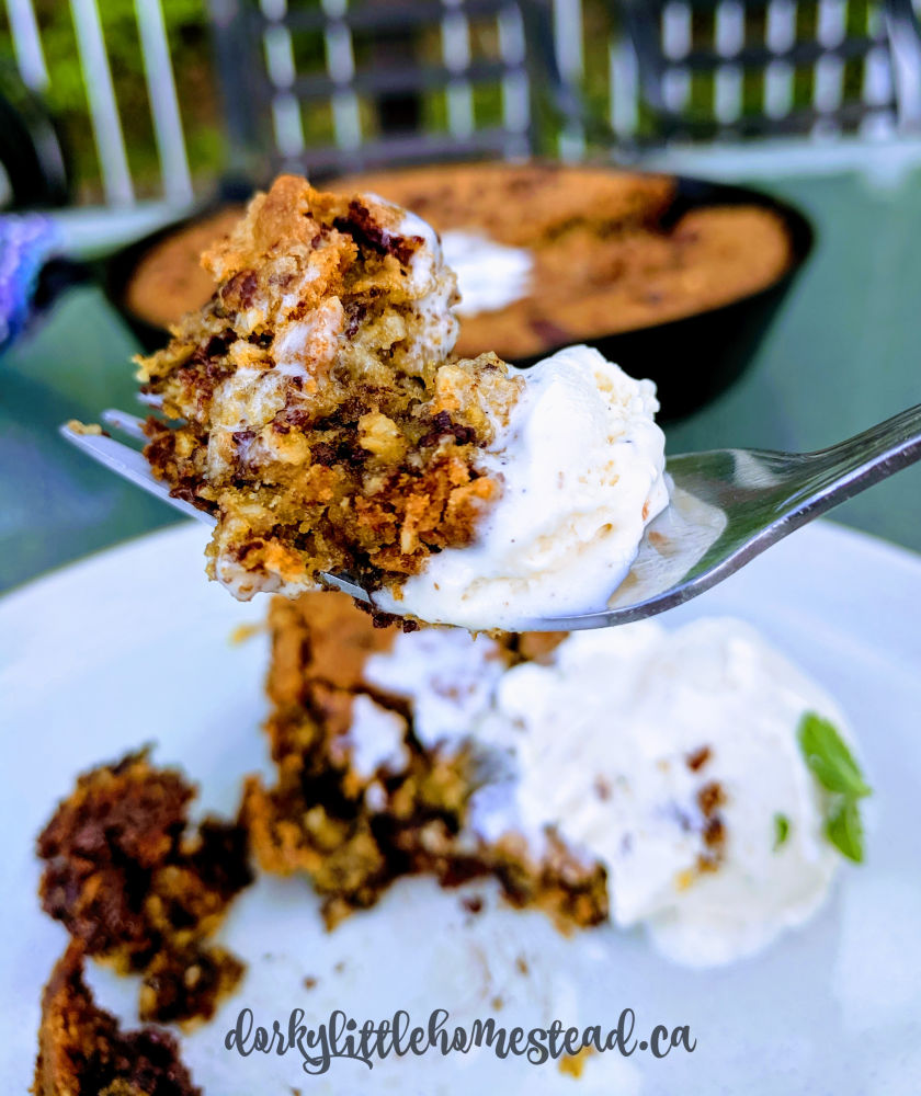 Skillet cookie and ice cream.
