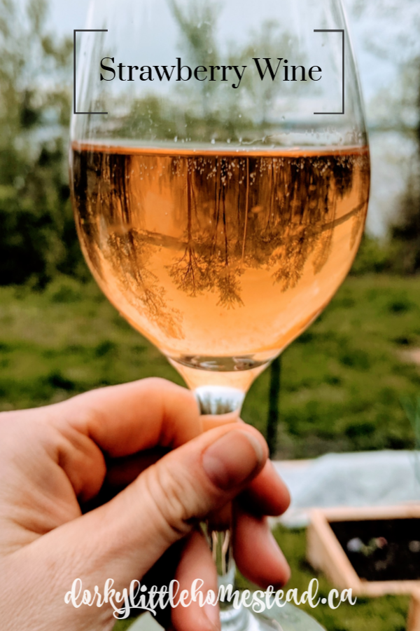 Light and fruity, this strawberry wine is the perfect way to preserve the summer. It's a long process, but very simple and totally worth the wait.
