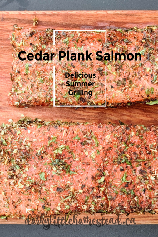 At our house, Summer food is all about fresh veggies and Barbeque! This cedar plank grilled salmon recipe is so easy that it is a must at our house through the season.