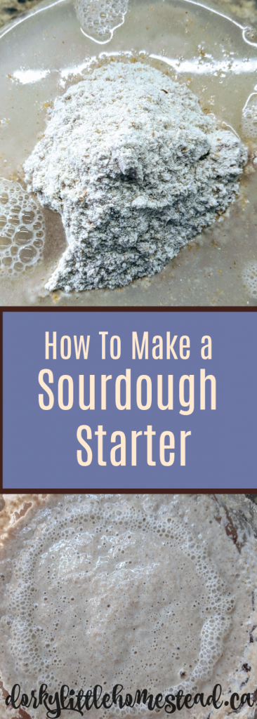 Making and Keeping a sourdough starter is a really wonderful way to step up your bread making. With just a couple minutes of care per day!
