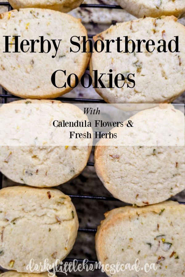 These shortbread cookies are buttery, and herby, with a hint of lemony Calendula.  They're perfect alongside a midsummer cup of tea.