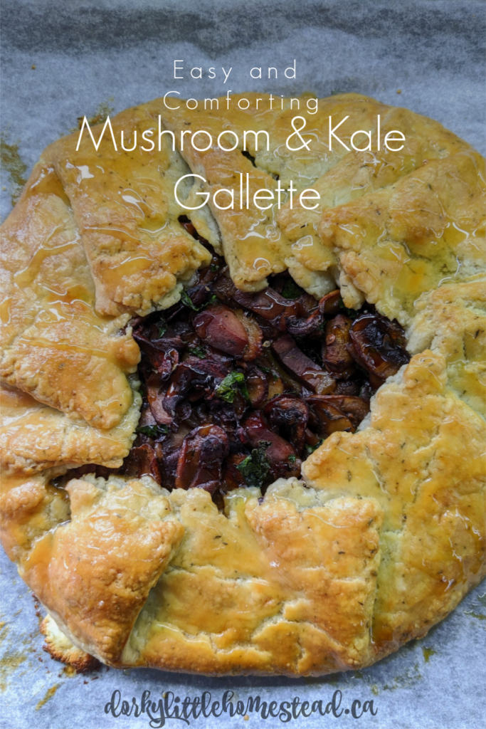 A classic rustic French pie, the Gallette is the answer to pie when you're feeling a bit lazy. This one is rich, flavourful and perfect for cold days.