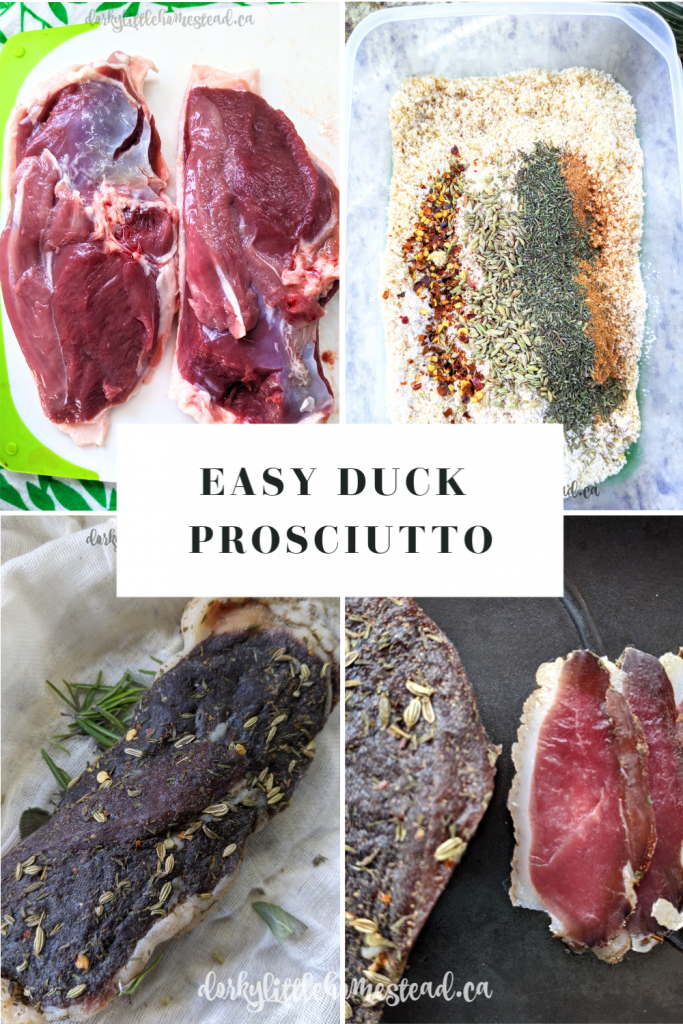 Duck Prosciutto is the perfect place to start in your homemade charcuterie adventures. This recipe is simple and delicious.
