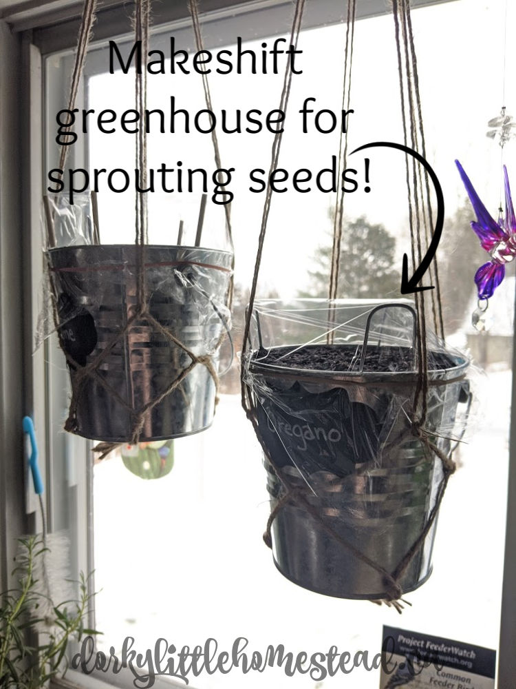 Use the planter to start seeds by tenting with plastic wrap.