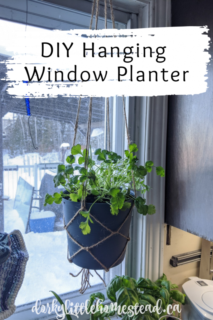 A simple hanging planter is the perfect fix to January blues. Ultra easy and cheap, they work in any kitchen, even if you have a small apartment kitchen.