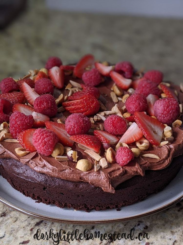 A gorgeuos fudgy chocolate cake to make your day better