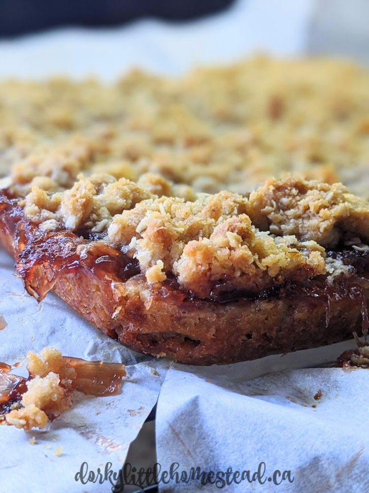 Jammy Oatmeal Crumble Bars