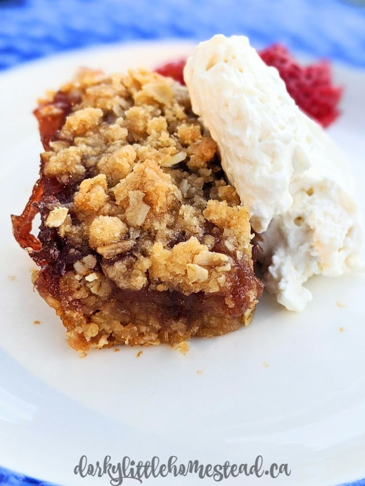 jammy oatmeal crumble bars are extra yummy with a big dollop of whipped cream