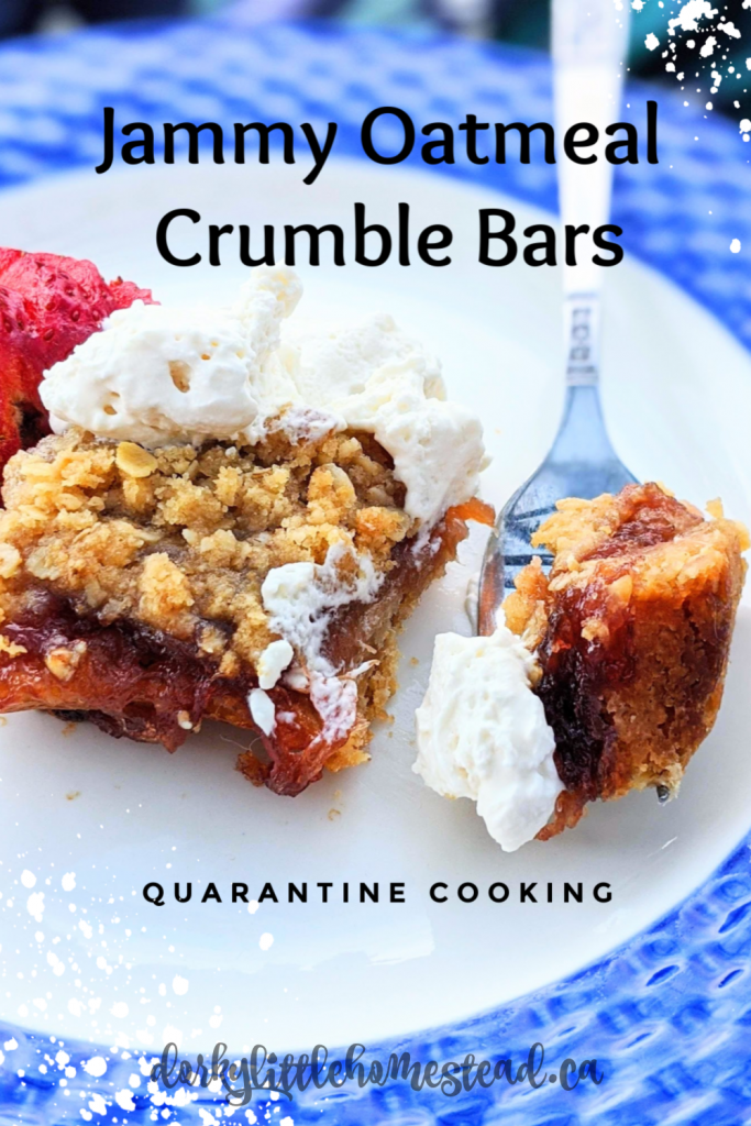 A simple Jammy Oatmeal Crumble Bar that's a perfect cure for a stressful quarantine day.