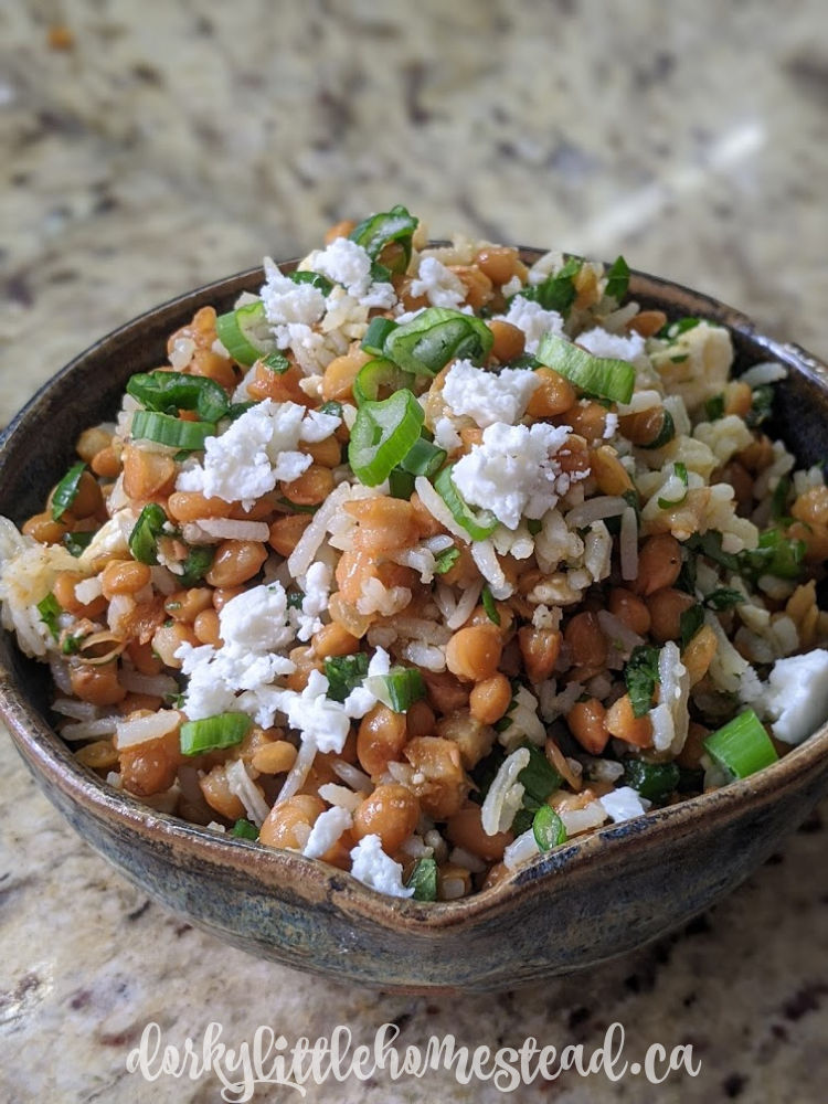 Rice & Lentil Salad, perfect for a hearty quarantine lunch.