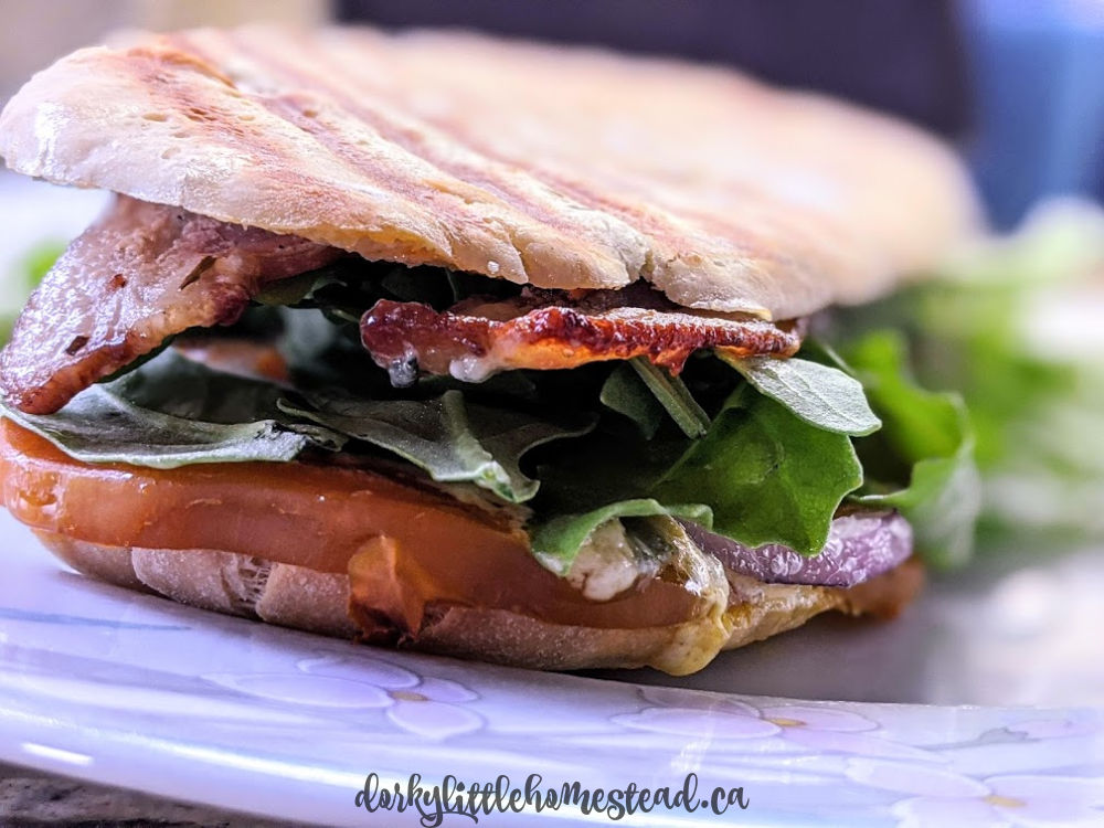 Beet, Bacon, & Blue Cheese Panini