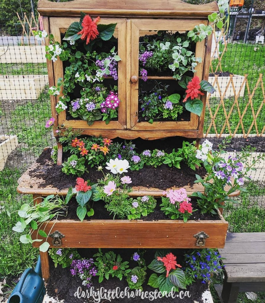 Planter made of an old china cabinet