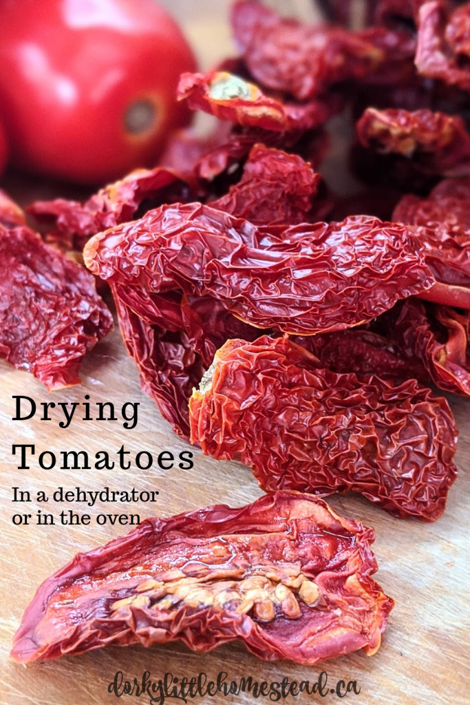 Drying tomatoes is a really fantastic, and easy way to preserve the scrumptious taste of summer.