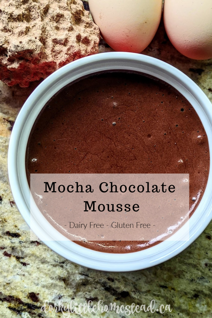 If you need a luxurious dessert, look no further than chocolate mousse. With a hint of espresso and almonds This Chocolate Mousse recipe hits the spot.