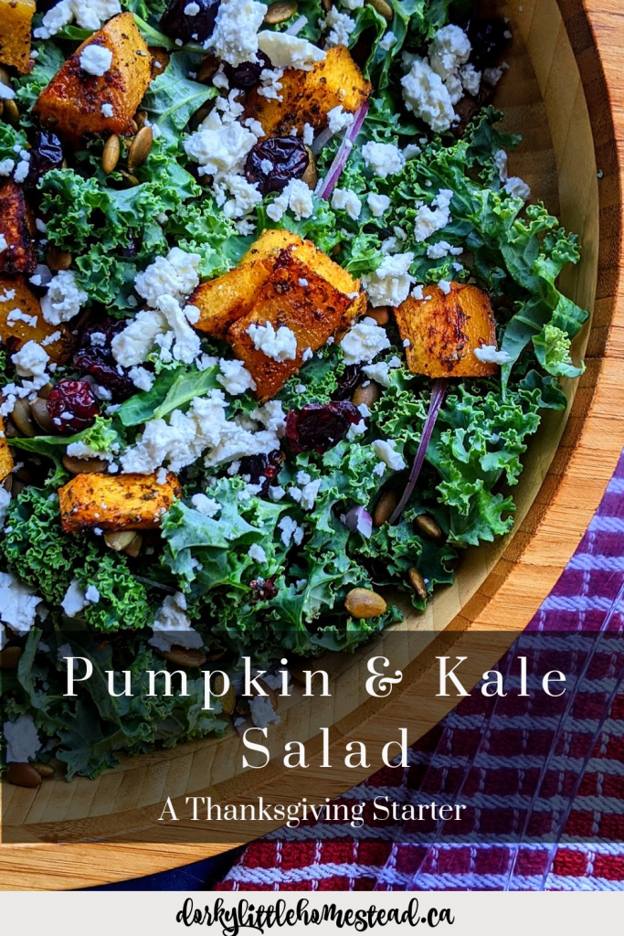 Alongside your Thanksgiving meal, this Pumpkin & Kale Salad is the perfect match. Bring some freshness to the table, and some pumpkin flare.