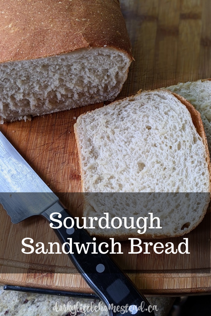 For sandwiches, grilled cheese, and simple French toast, a dense and chewy, sourdough sandwich bread is exactly what you need.