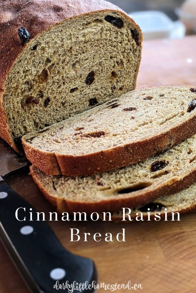 Dense, chewy, and fragrant Cinnamon Raisin Bread. Perfect for your morning toast alongside a cup of coffee.