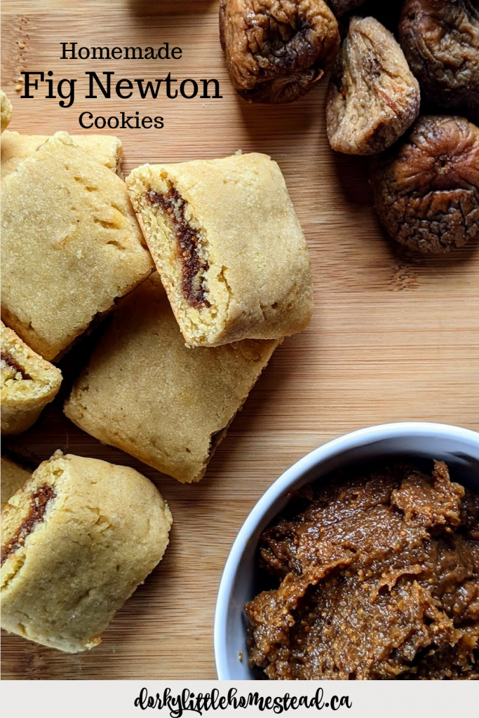 Fig Newton cookies are a classic  that get very underrated. These cookies have a cakey outside, and a sweet nutty filling, and make the perfect fall treat.