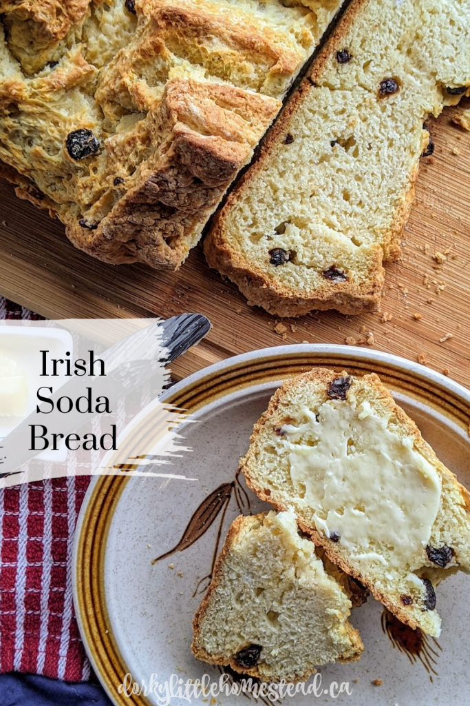 A modern take on the classic Irish Soda Bread recipe. A little bit sweet, with pops of currant, and a buttery texture.