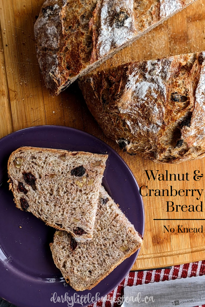 A Walnut Cranberry Whole Wheat, No Knead Bread. Perfect for midweek baking, hearty breakfasts, and big sandwiches.