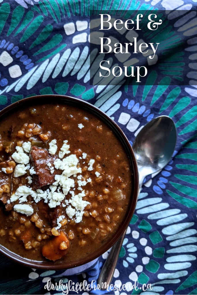 Beef & Barley Soup is a classic comfort food. It's filling, warming, and a great healthy choice for a winter lunch.